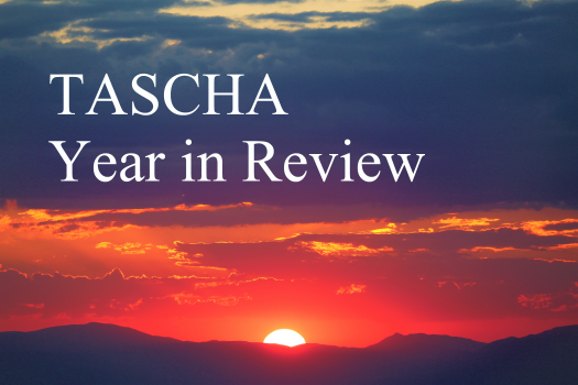 """The words """"TASCHA Year in Review"""" written in a white font over an image of a red and purple sunset"""